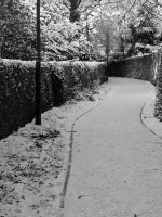 Snow covered lane by minghai