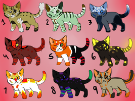 5 point cat themed adoptables by eliza1star