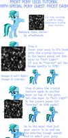 Frost Pony Legs Tutorial by RicePoison