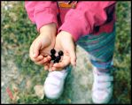 Small hands by whorer-movie