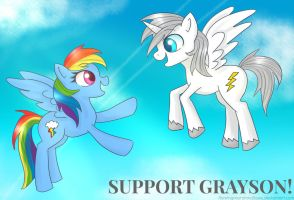 SUPPORT GRAYSON! [please read] by flamingmarshmallows