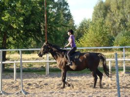 Stock 429: horse+rider trot 2 by AlzirrSwanheartStock