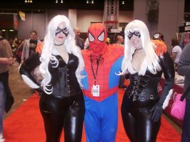 C2E2 2012 Saturday - Spidey and Black Cats by soryukey