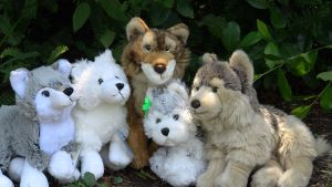 Webkinz Wolf Family by YellowLab8078