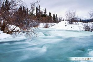 Fish Creek by softflower