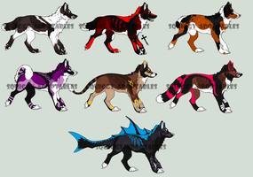 -Point adoptables 55- by Squiggy-Adoptables