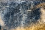 Texture 86 by Malleni-Stock