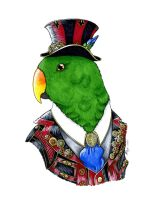 Exstatic Eclectus by Khimera