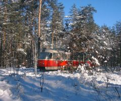 tram in the winter forest by aloner777