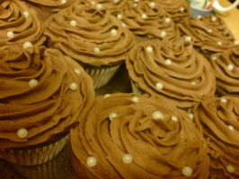 Chocolate Swirl Cupcakes by Catzombies