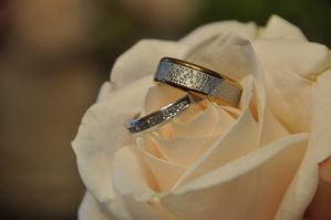 Rings and Roses by melgan1