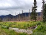 Kootenay Plains, Alberta by godofodd