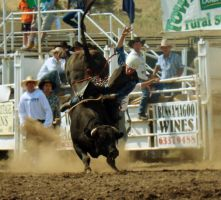 Rockley Rodeo 10 by engaged-vacancy