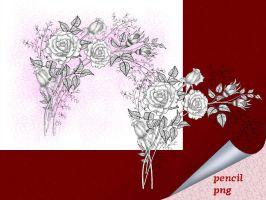 Roses Pencil by roula33