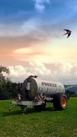 Farmer's pride and a swallow by patrickjobst