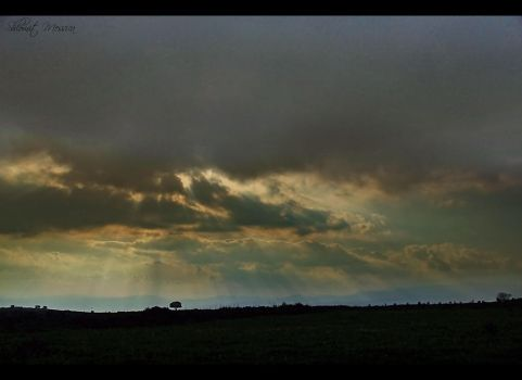 cloudy afternoon by ShlomitMessica