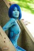 Halo - Cortana 11 by Hyokenseisou-Cosplay