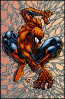 Amazing Spider-man by logicfun
