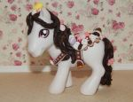 My Little Pony Custom Sweets Decoden Girl by AdeCiroDesigns