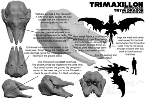 Trimaxillon by BjornFeuer