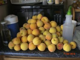 Pile Of Peaches by SN2