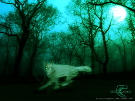 Mystic Wolf by Consolous