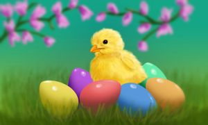 Fluffy Easter Chick by MsArtGarden