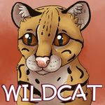 Wildcat by Takkaia
