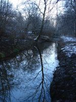 River in forest by Lukotus