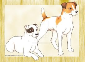 Parson Russell Terriers by stormwhisper02