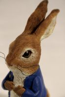 Peter Rabbit close up by kezeff