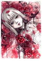 red rose by sinvia