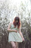 Spring Stock 16 by Malleni-Stock