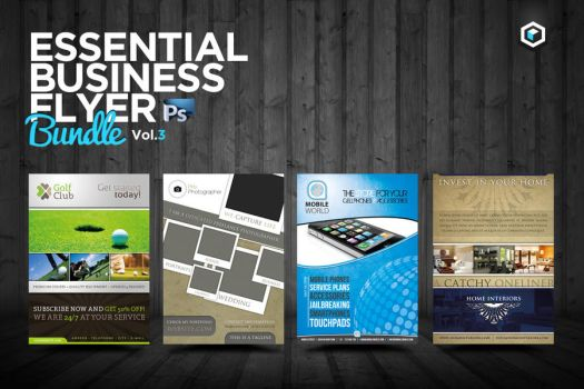 RW Essential Business Flyers Vol 3 by Reclameworks