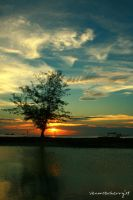 bye sunset... by herryhewy