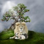 The Lion and The Lamb by Elchanan