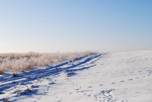 Winterscape 4 by TWO--GUNS