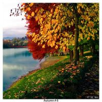 Autumn_6 by Marcello-Paoli