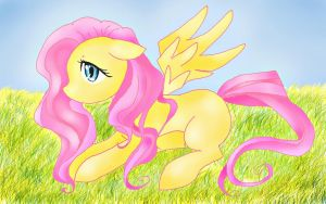 Young Fluttershy by h00fbump