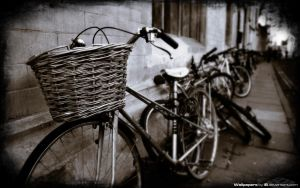 Basket Case 1920x1200 by l8
