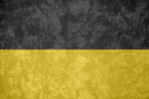 Austrian Empire ~ Grunge Flag (1804 - 1867) by Undevicesimus