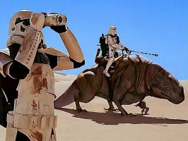Star Wars Sandtrooper wall 1 by jkno4u