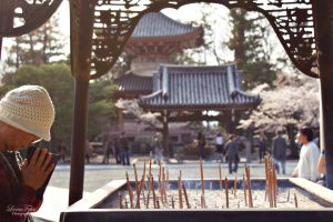 Chion-in Temple in Kyoto by LunaFeles