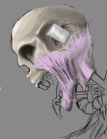 face man wip by Infernomonster