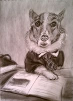 Lawyer Corgi by ruggala08