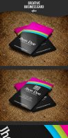 Creative Business Card by afizs