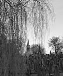 The Willow Weeps For The Dead by Estruda