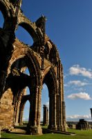 Whitby Abbey by M00N-flower