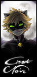 Chat Noir by Aish89