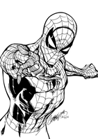 Spiderman warm-up inks by J-Skipper